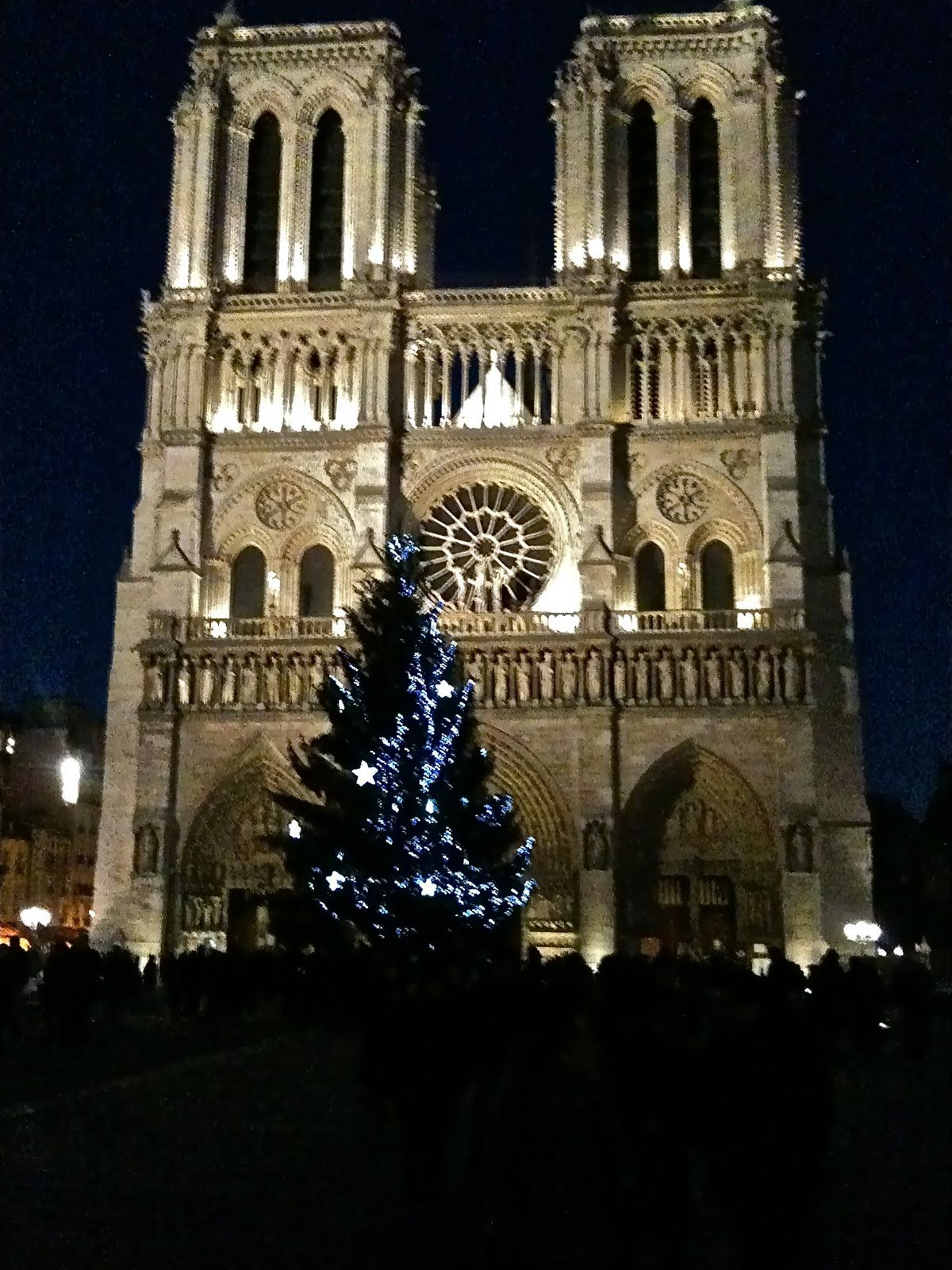 Cathedralé Notre Dame de Paris: On the night of Christmas – Anon's ...